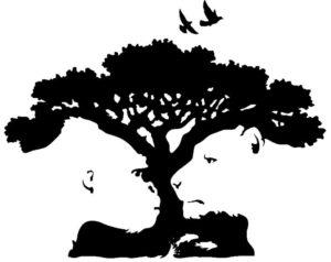 Psicoterapia della Gestalt: visione soggettiva della realtà